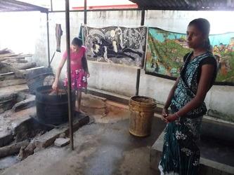 Sigiriya et Dambulla du 19 au 20 février 2015