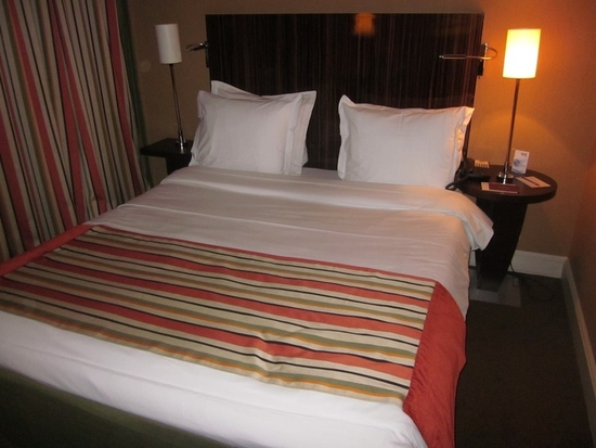 Hotel Mercure Paris (3)