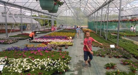 Visite chez un horticulteur