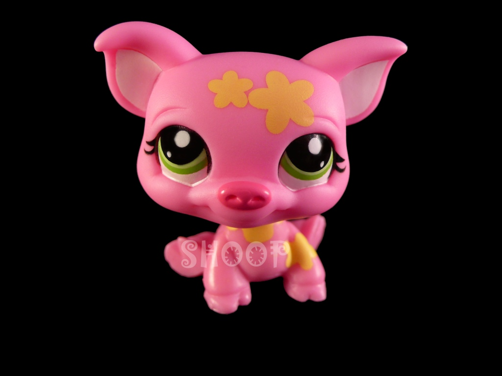 LPS 2530