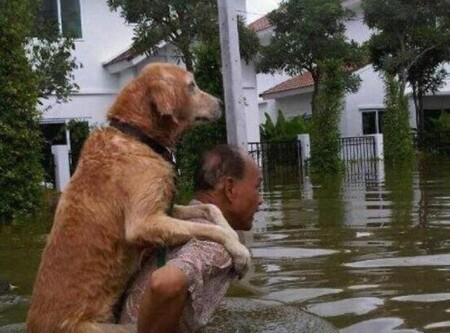 Tu me protéges, comme je te protège