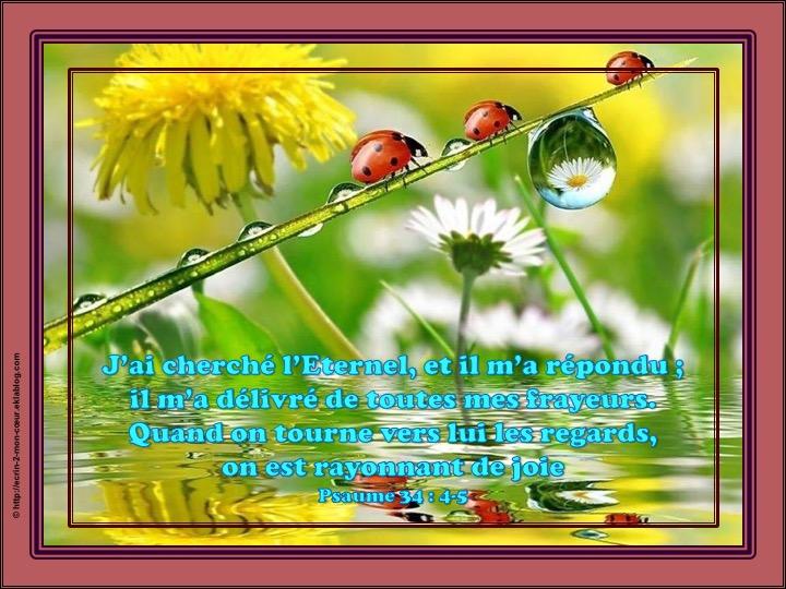 Il m'a répondu, il m'a délivré - Psaumes 34 : 4-5