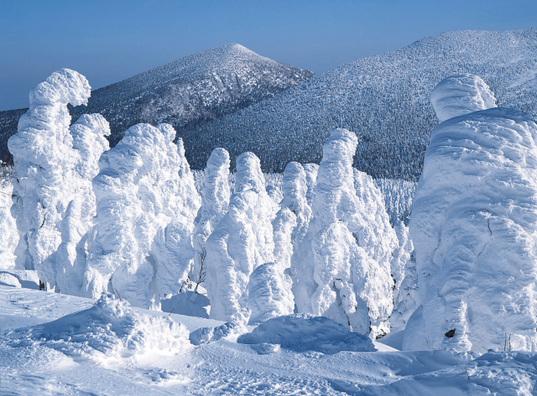 Snow monster --