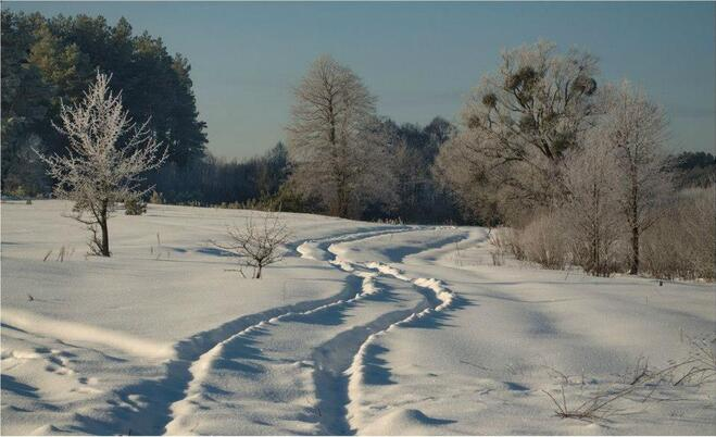 Fonds, neige, blanc,hiver,