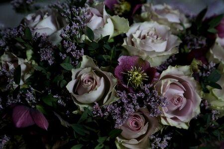 Roses & hellébores (1/2)