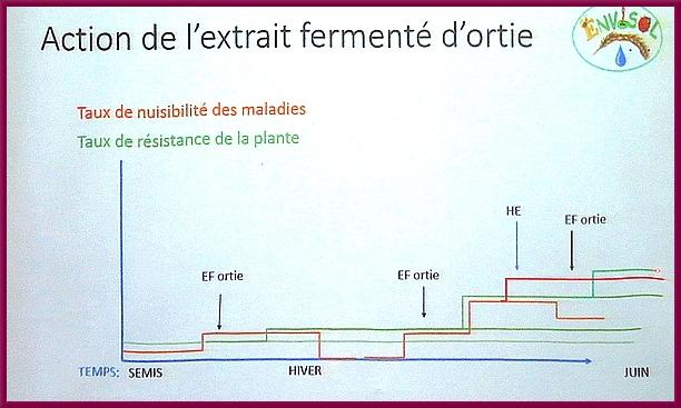 """""""La Journée de la Science"""" au Lycée de la Barotte, a exploré les différentes utilisations des huiles essentielles, en particulier pour l'agriculture"""