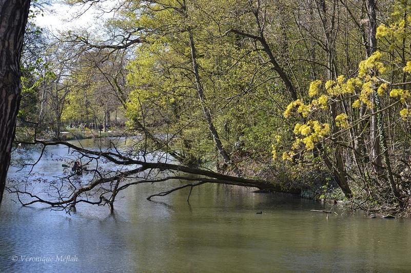 Bois de Vincennes : Lac des Minimes