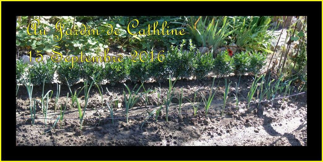 Jardiner avec le Lune du 21 au Septembre