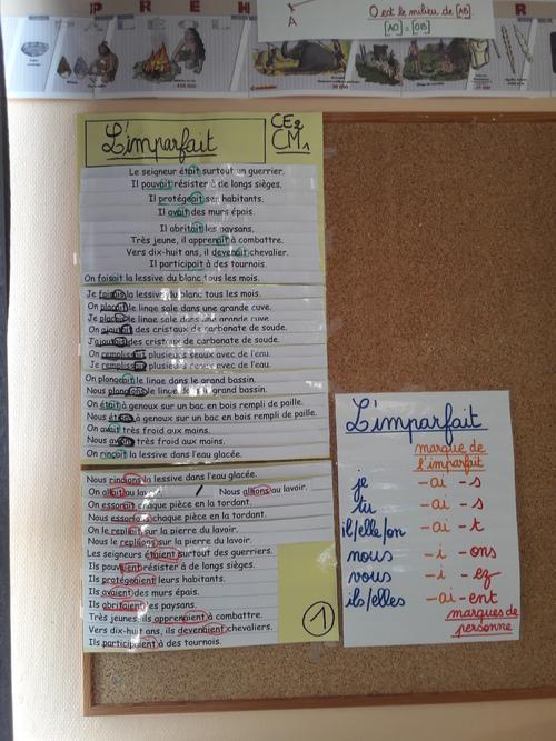 Grammaire au jour le jour : les collectes pour petits cahiers