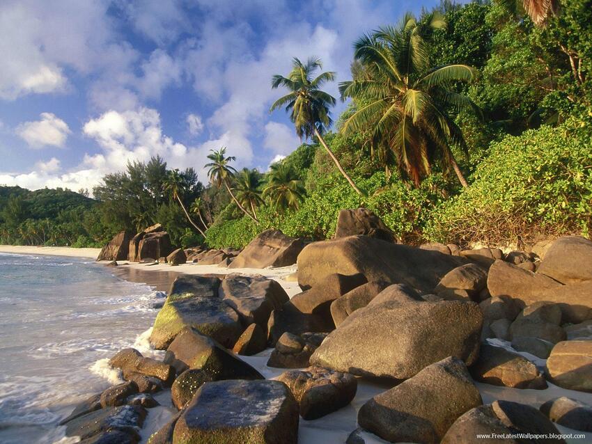 5 images d'îles