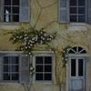 façade - rosiers (3)