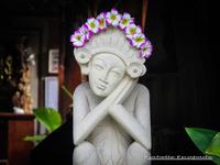 Photos du site - Chez Mistouline (43)