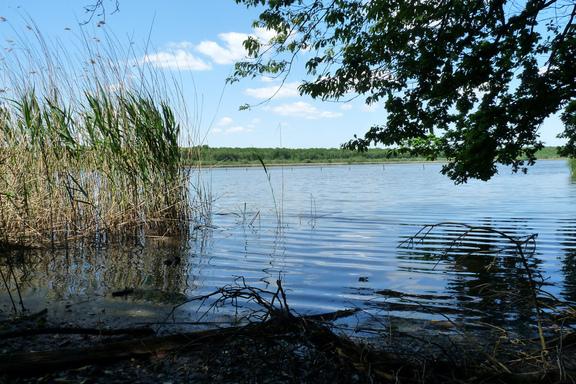 """Résultat de recherche d'images pour """"lac de virelle"""""""