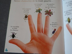 Nos petites lectures