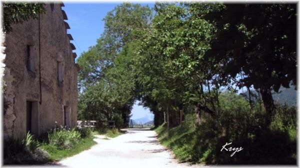 Entre Villard et Lans (4)
