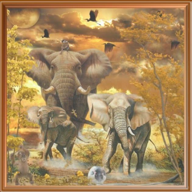 la charge des éléphants