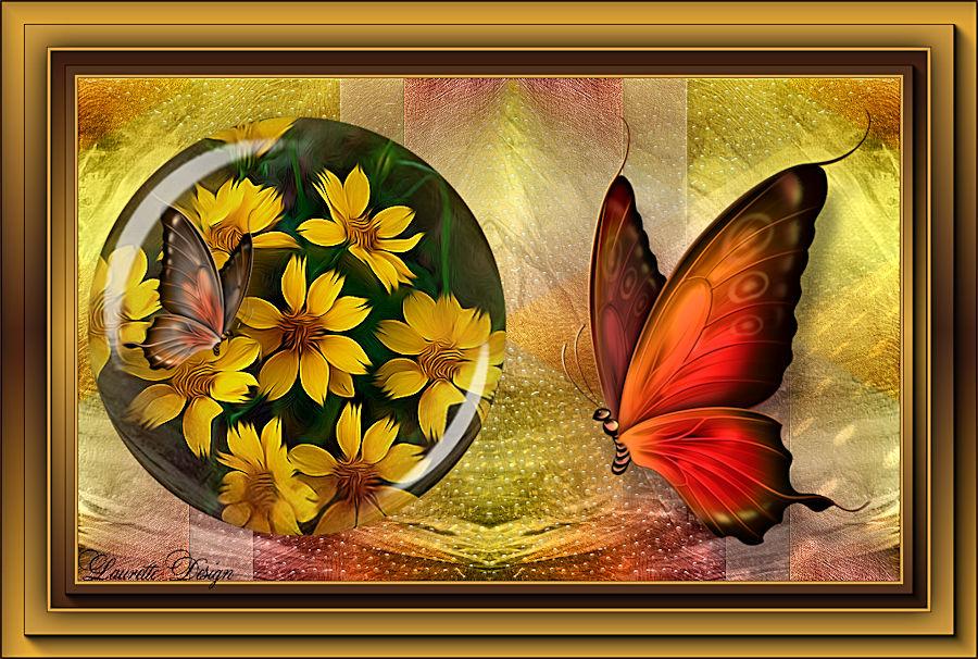 Saturnella ...buterfly
