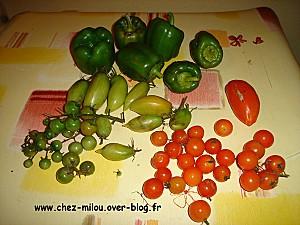 légumes d'automne 02