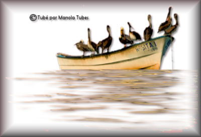 Tubes bateau 2999