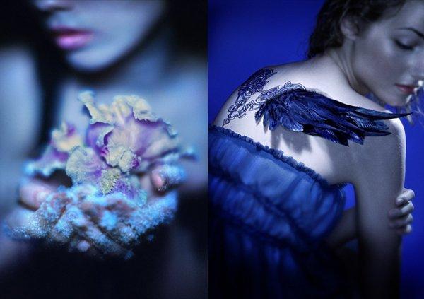 Les photos qui constituent les couvertures des livres Wicked Lovely