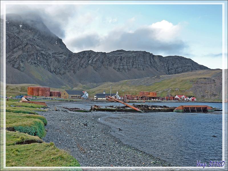 L'ombre a envahi Grytviken, accentuant le sinistre de ces lieux où des milliers et des milliers de baleines, autres mammifères marins et oiseaux ont fini dans ces fours à huile - Géorgie du Sud