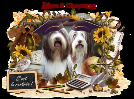 ♥ Bonne rentrée d' Athos & Cheyenne ♥