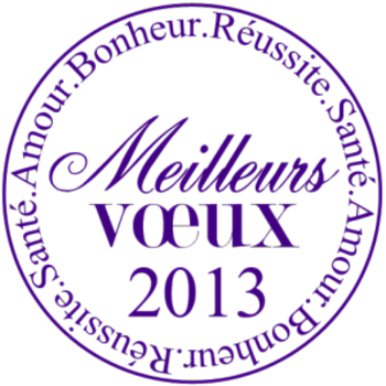 voeux20134