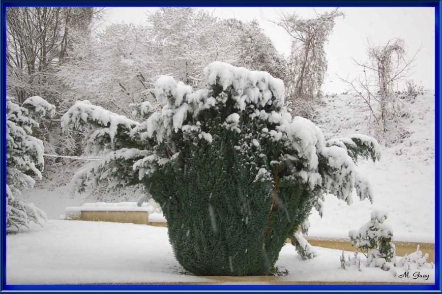 neige-0186