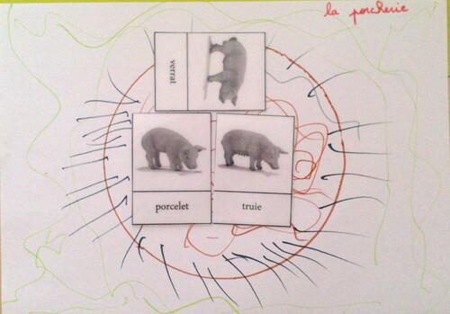 Graphisme et Nomenclatures : La Ferme PS - MS