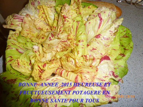 A TOUS MES AMIS JARDIPOTAGERS