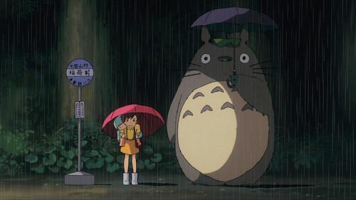 Carte Hda Miyazaki