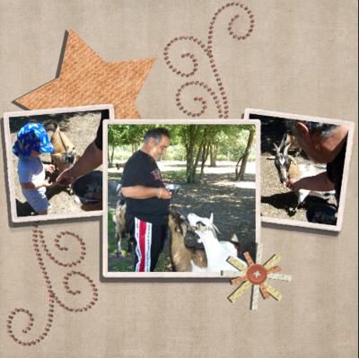 Blog de chipiron :Un chipiron dans les Landes, la ferme aux chèvres