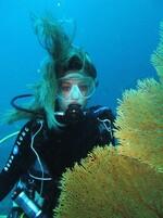 Sous l'eau ... Cliquer pour agrandir