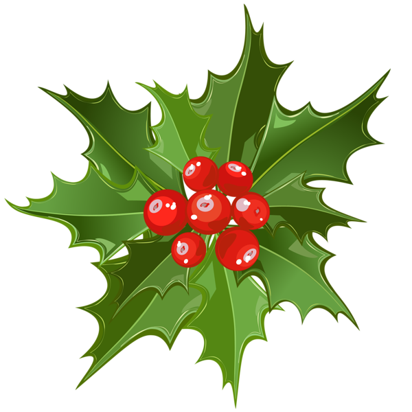 http://gallery.yopriceville.com/var/resizes/Free-Clipart-Pictures/Christmas-PNG/Christmas_Mistletoe_PNG_Art.png?m=1399672800