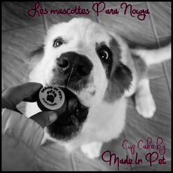 Made In Pet, des friandises très chics !