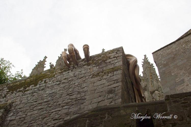 Normandie : Mont Saint-Michel 7/ : Rapace ou chimère