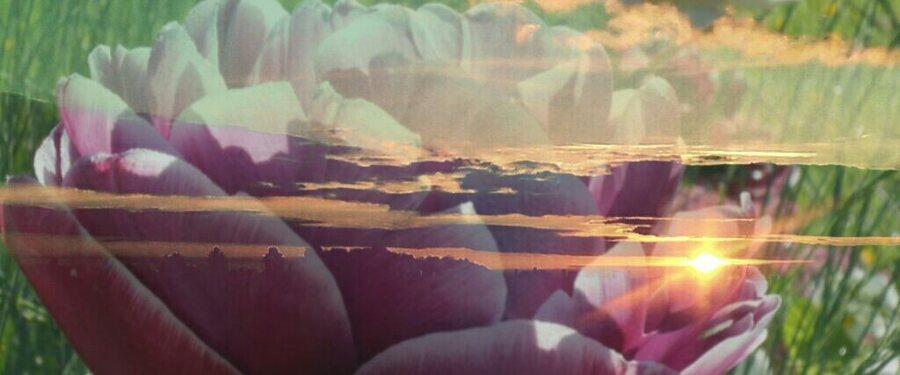 Couchers de soleil aux grands bas posters