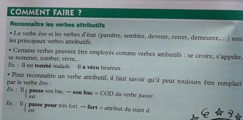 F / Les verbes attributifs