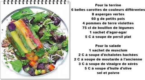 Terrine de légumes et salade