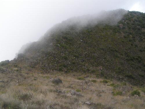 Prairie et barres rocheuses dans une ravine vers le Petit Bénare