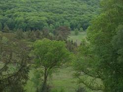 Anes de Vassivière, yourtes et Haut Limousin