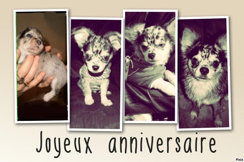 Amaury# HappyB 3 ans