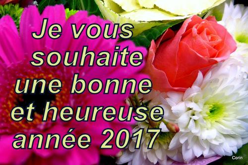 Bonne année à tous mes visiteurs !