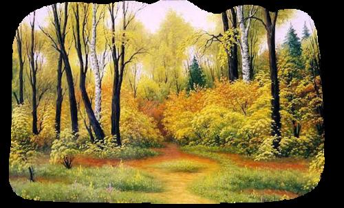 Paysage, forêt, bois, 2