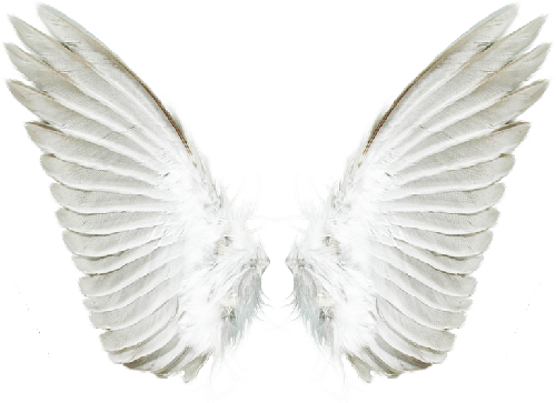 TUBES ANGES PNG