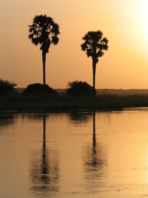 Cocher de soleil sur le fleuve