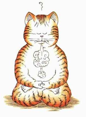 http://paulocoelhoblog.com/wp-content/uploads/2012/09/chat-meditation.jpg
