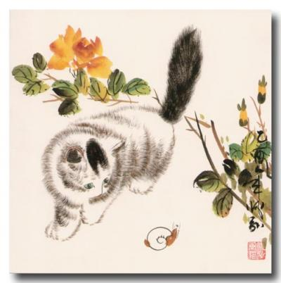 orchidee et chat