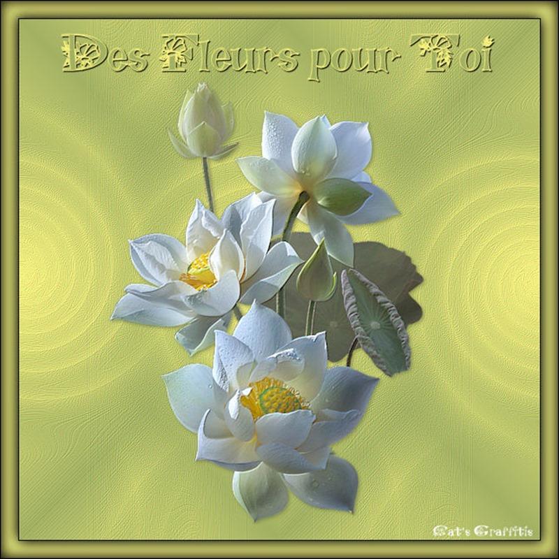 Des fleurs pour toi