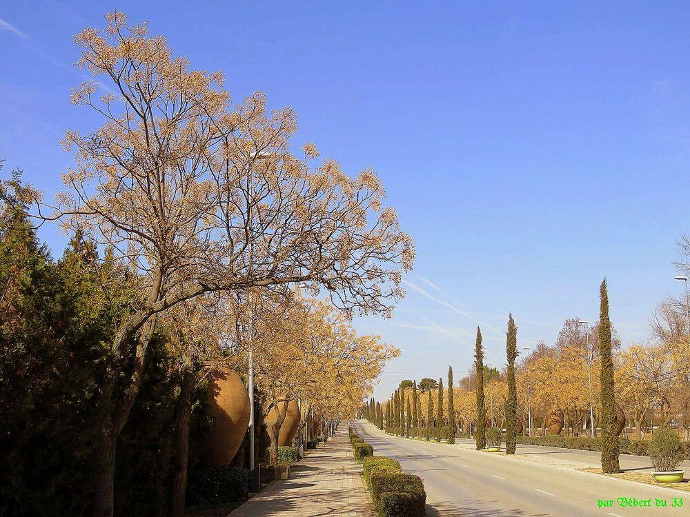 Manzanares en Espagne
